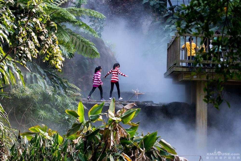 厦门园林植物园热带雨林如梦似幻