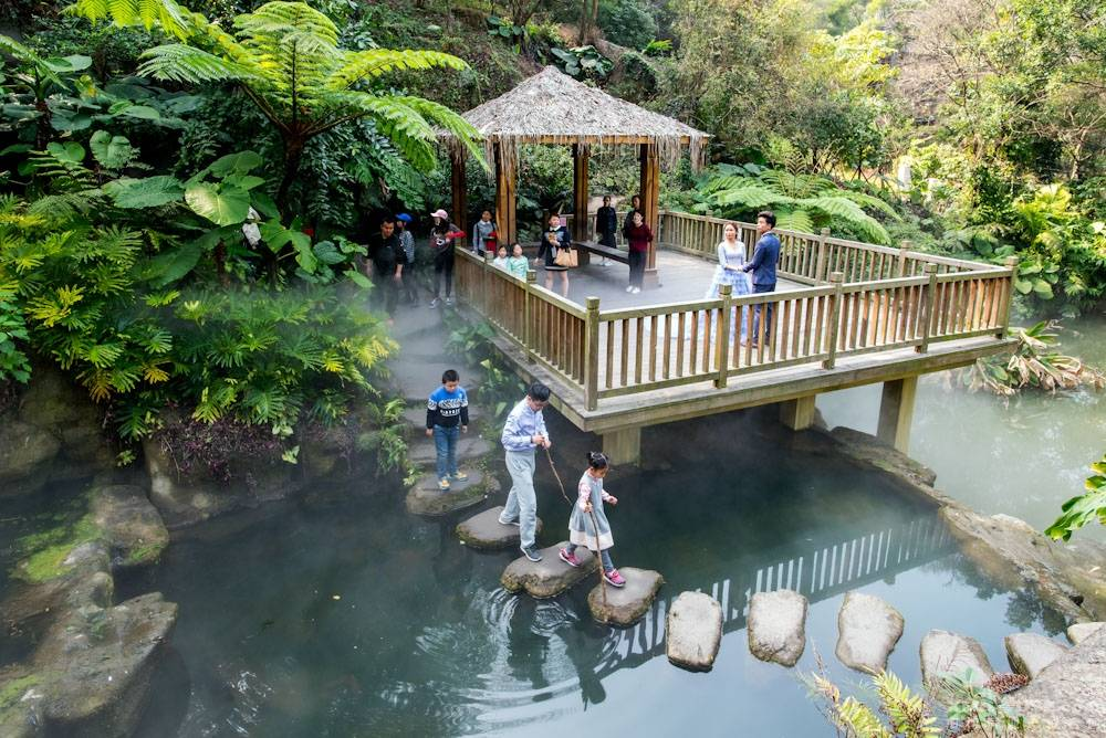 厦门园林植物园热带雨林-11.jpg