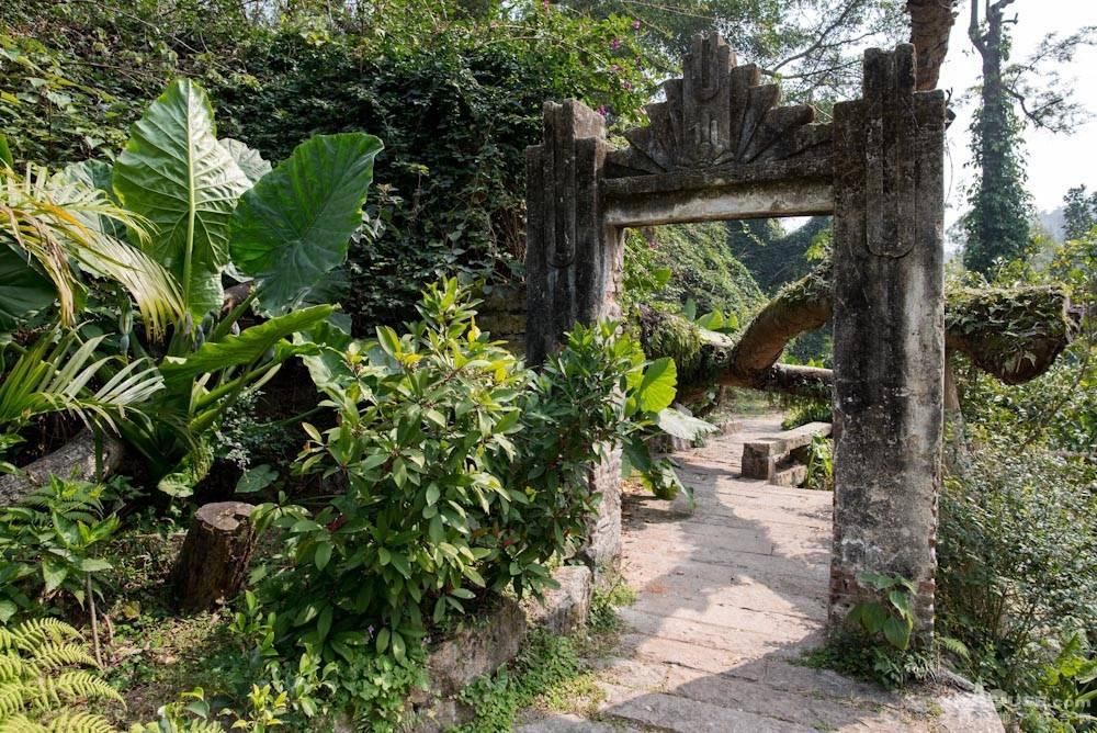 厦门园林植物园热带雨林-13.jpg