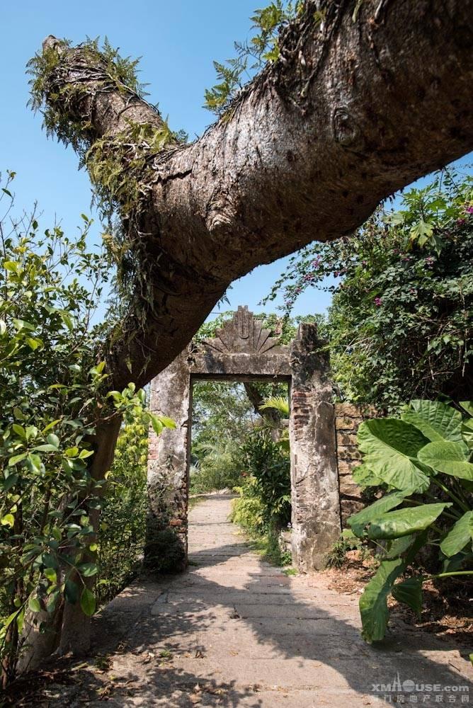 厦门园林植物园热带雨林-15.jpg