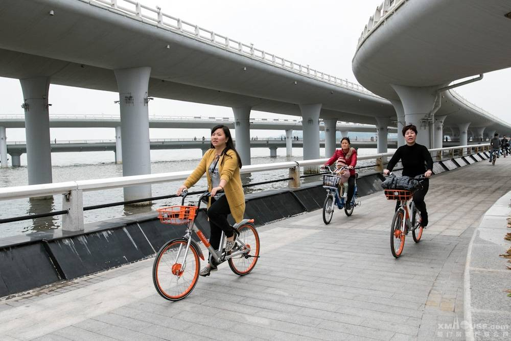 图说厦门共享自行车-4.jpg