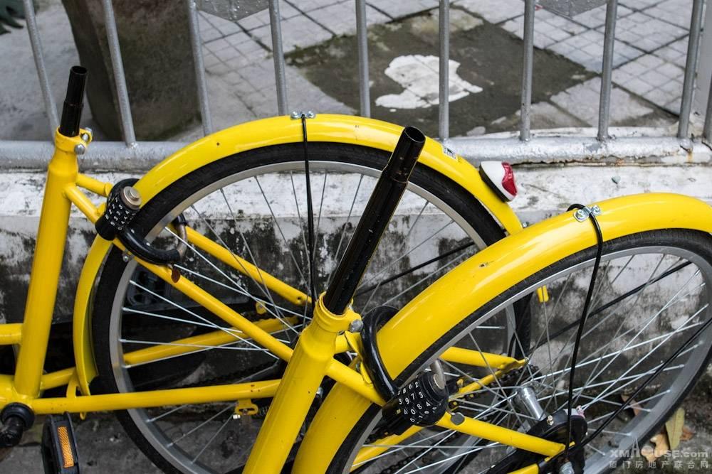 图说厦门共享自行车-26.jpg